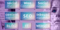 Consultante web et réseaux sociaux